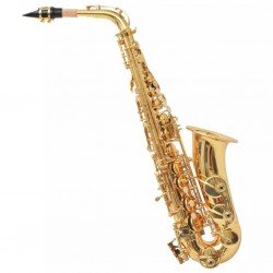 Alto Saxophone vidaXL Yellow Brass with Gold Lacquer Eb Tuning, Case + Accessories